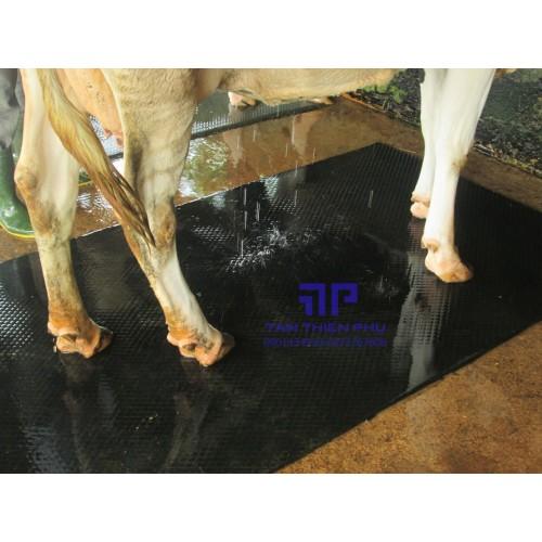 Tấm cao su chống trơn trượt 3mm (3li)