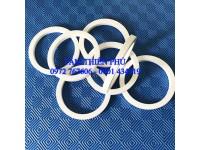 Vòng nhựa teflon (ptfe)